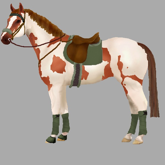 Snafflez HorseMaker Design And Dress Up Your Pony